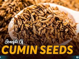 Benefits Of Cumin Seeds