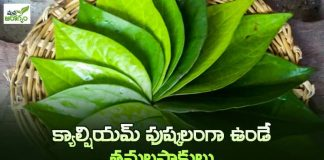 health benefits of betel nut