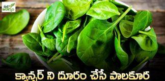 Health Benefits of palakura