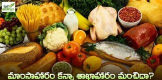 Vegetarian - Non vegetarian