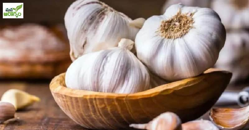 Foods that protect against food poisoning