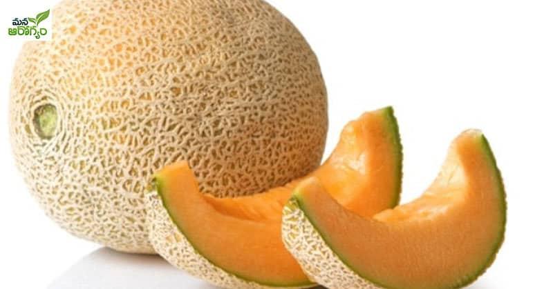 benefits of Musk Melon