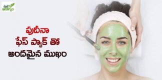Beautiful face with mint face pack