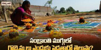 Significance of Gobbemmalu in Sankranthi Festiva