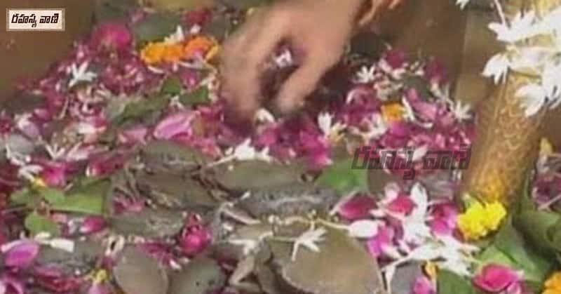 రామనాథ్ శివ ఘేలా ఆలయం