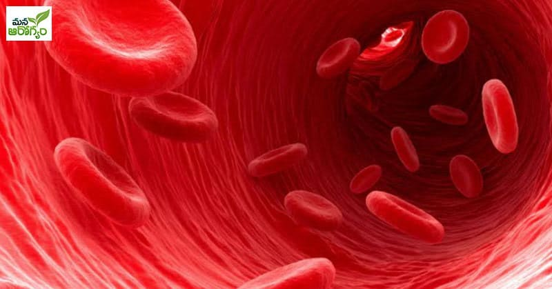 foods that can cure anemia