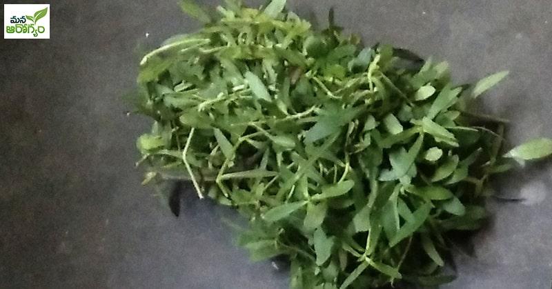 Health Benefits of Eating Ponnaganti curry