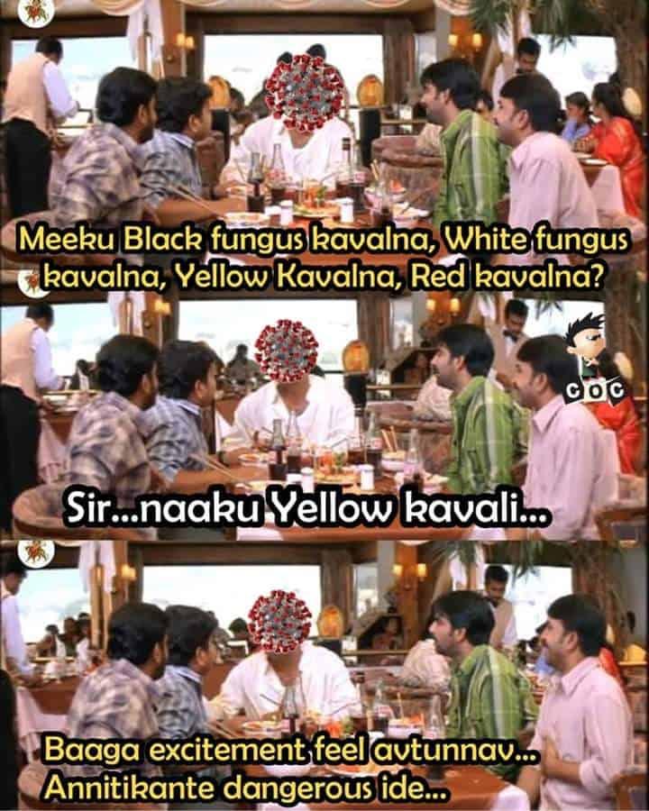 12.Yellow Funagus memes
