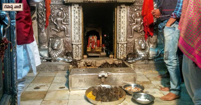Strange temples built for animals