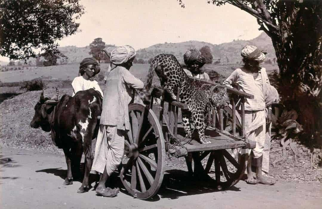 1.Vintage Pics Of Our India
