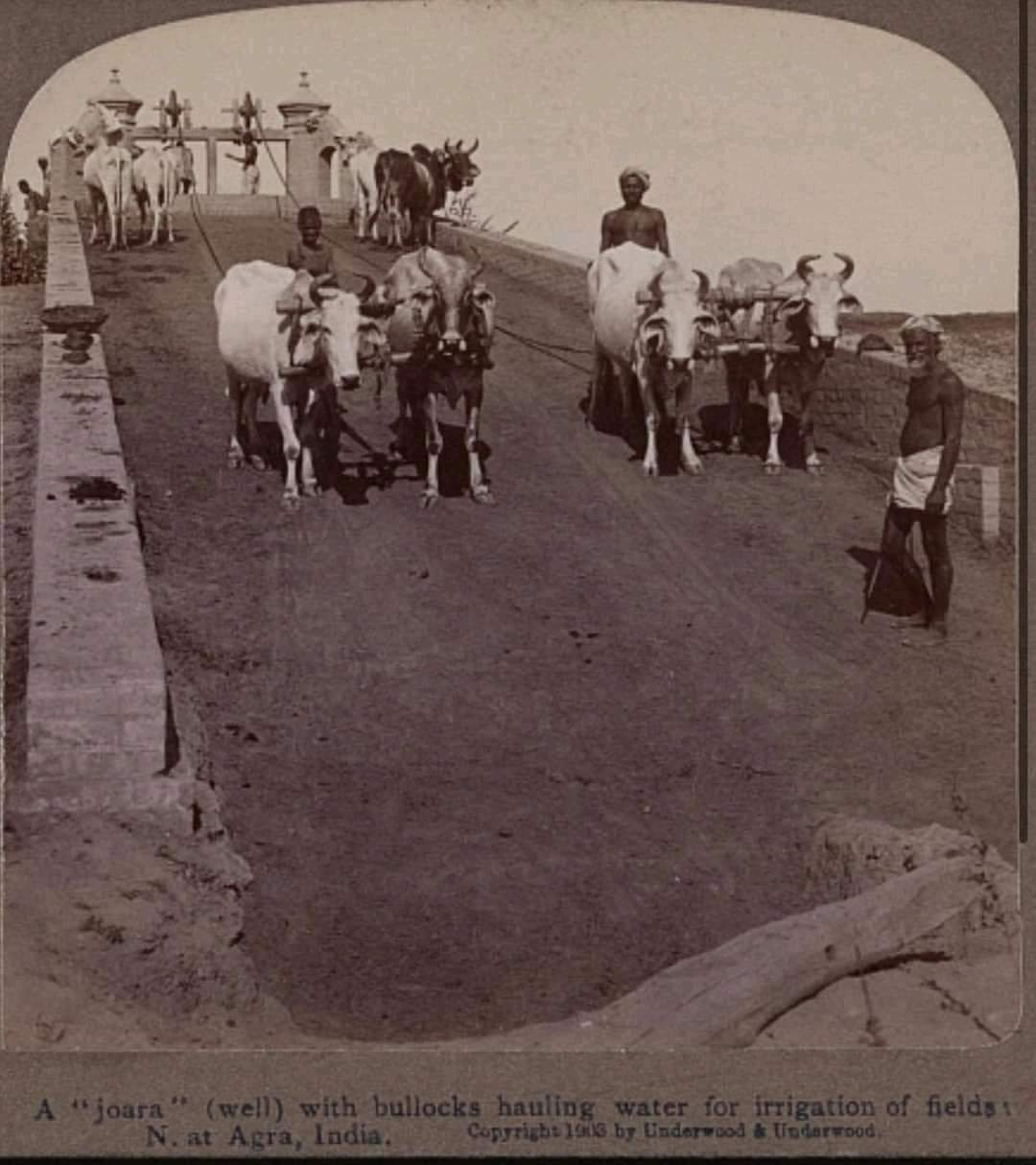 3.Vintage Pics Of Our India