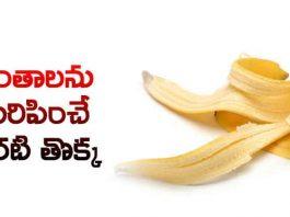 Mana-Aarogyam-616