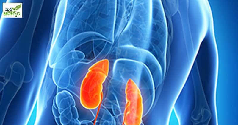 ప్రోటీన్లు ఎక్కువగా తీసుకోవడం వలన కలిగే నష్టాలు