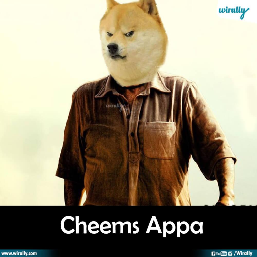 Cheems Appa