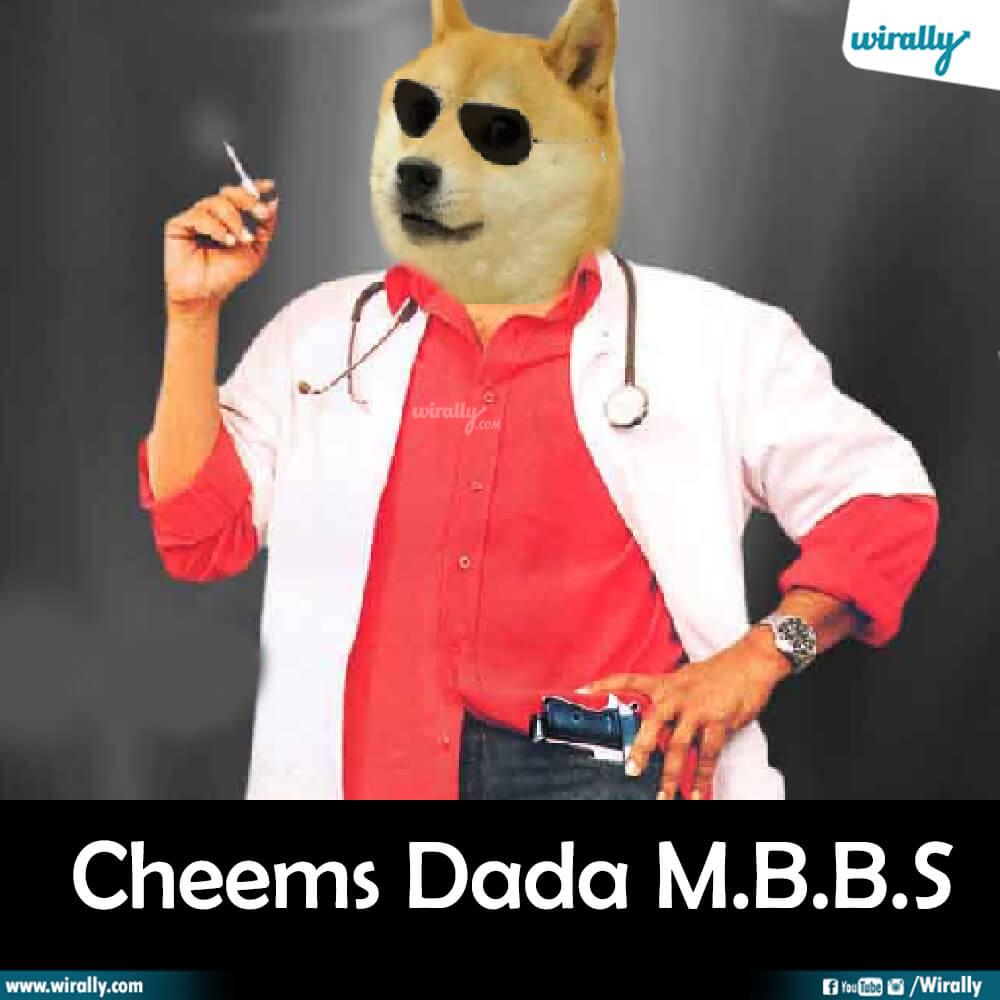 Cheems Dada M.B.B.S