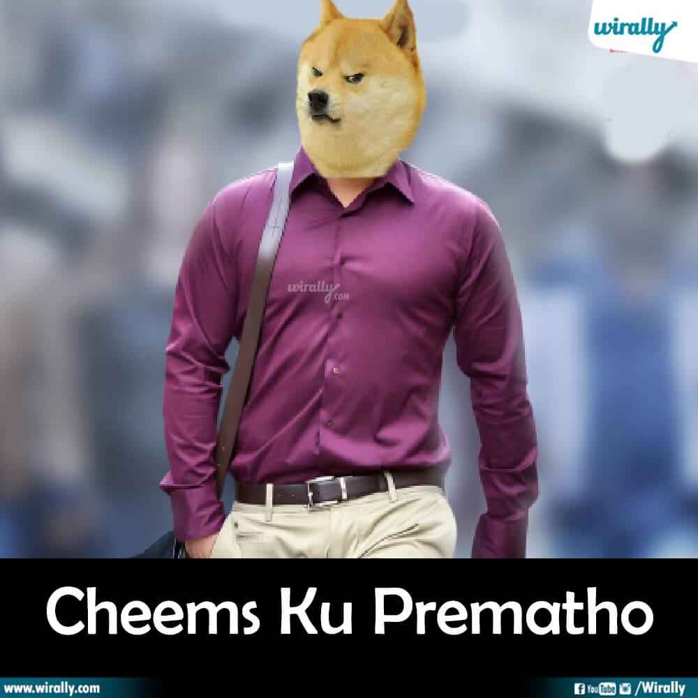 Cheems Ku Prematho