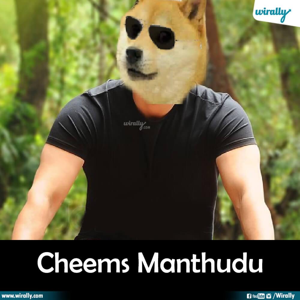 Cheems Manthudu