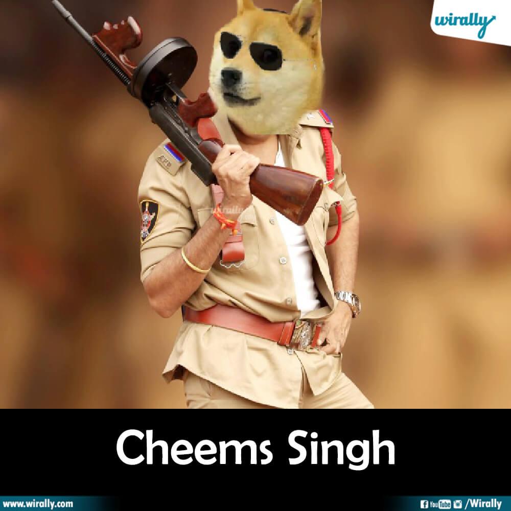 Cheems Singh