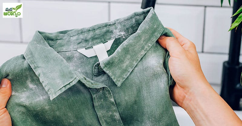 fungus on clothes