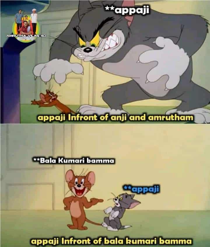 5.Amrutham memes