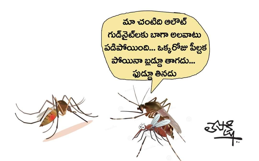 6.Lepakshi Cartoons