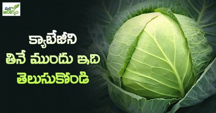 get to know before eating cabbage