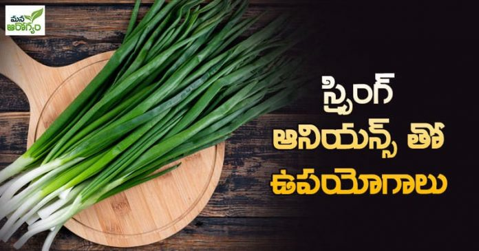 Advantages of spring onions